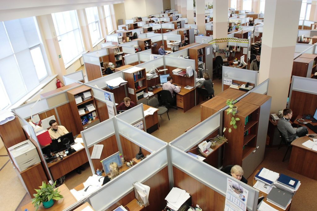 Cubicles in a large office.