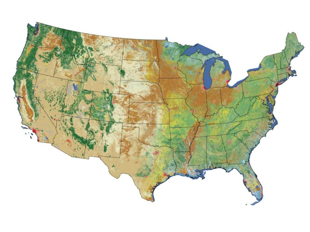 U.S. land cover map