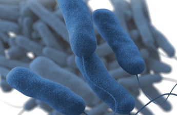 This illustration depicted a three-dimensional (3D), computer-generated image, of a group of Gram-negative, Legionella pneumophila, bacteria. The artistic recreation was based upon scanning electron microscopic (SEM) imagery.